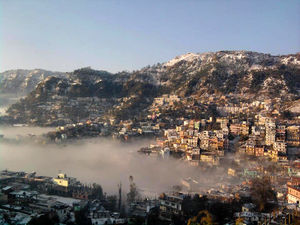 45 km from Shimla, this is how I discovered the Mushroom Capital of India!