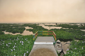 This Wetland In Punjab Will Put The Best In The World To Shame!
