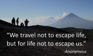 Traveller's journey to life