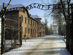 This Wasn't Easy : Auschwitz-Birkenau