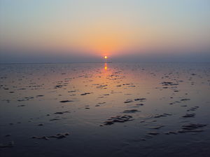 Chandipur: soulful walk with the waves