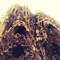 La Sagrada Familia 2/34 by Tripoto