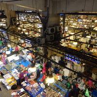 Noryangjin Fisheries Wholesale Market 2/3 by Tripoto