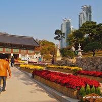 Bongeunsa Temple 4/4 by Tripoto