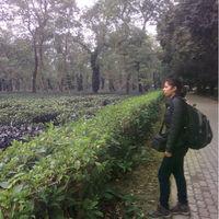 Nidhi Travel Blogger