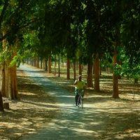 Chandigarh Rose Garden 3/5 by Tripoto